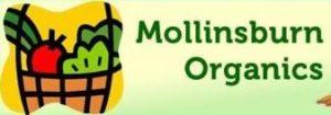mollinsburn